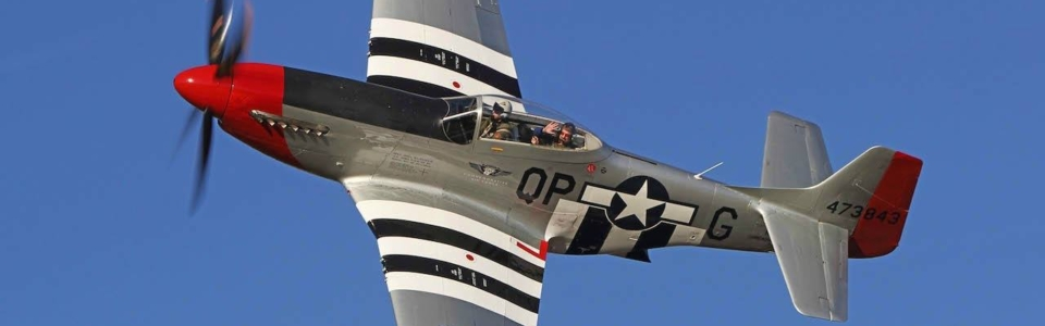 Red-Nose-p-51